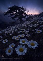 Falling Into Darkness (BostonHVAC167) Tags: twilight pollino bruno pisani mythlands