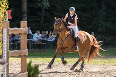 DSC02410_s (AndiP66) Tags: aespli derby hindelbank springen 2016 pferd horse schweiz switzerland kantonbern cantonberne concours wettbewerb horsejumping springreiten pferdespringen equestrian sports pferdesport sport martinameyer grueb wolhusen luzern sony sonyalpha 77markii 77ii 77m2 a77ii alpha ilca77m2 slta77ii sony70400mm f456 sony70400mmf456gssmii sal70400g2 andreaspeters bern ch september