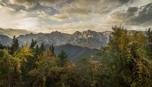 Sueño otoñal / Autumn Dream