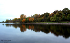 Reflections on the Loch (AlanaLouiseBowmanPhotography) Tags: water loch strathclyde park scotland motherwell wide angle photography landscape