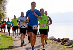 Hallwilerseelauf: Halbmarathon durch den herbstlichen Uferguertel