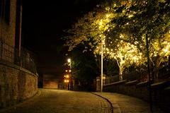 'Starlit' :-) (h_cowell) Tags: lights twinkling road street cobbles cobbled lowlight starburst dark contrast colour trees green christmas fairylights magical longexposure panasonic gx7 cheshire uk lowkey appicoftheweek