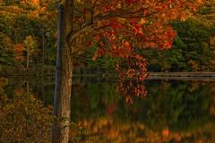 Autumn Fires (SunnyDazzled) Tags: autumn leaves foliage fall tree lake reflection shore colorful nature scenery landscape water harriman state park newyork laketiorati
