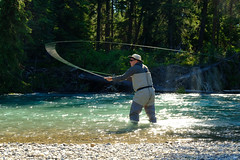 Fly-fishing the Upper Bow (save rhinos) Tags: fishing flyfishing canada bow calgary banff river water wading casting