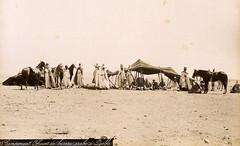 Campement officiers du bureau arabe à Djelfa, Algerie, 1880 (Benbouzid) Tags: campement bureau arabe djelfa ouled nail hassi bahbah messaad