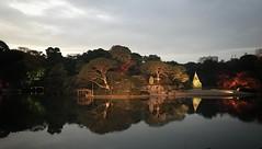Rikugien Garden - Tokyo (-Faisal Aljunied-) Tags: nightshot autumnleaves tokyo iphone7plus rikugiengarden faisalaljunied
