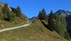 Les Toules (bulbocode909) Tags: valais suisse bourgstpierre montagnes nature chemins arbres paysages vert bleu valdentremont