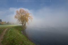 Autumn (Mirek Pruchnicki) Tags: radymno wojewã³dztwopodkarpackie polska autumn morning morninglight tree lake misty fog colors cold