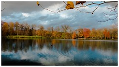 Look at this natural picture and forget your stress (aminekaytoni) Tags: nature stress tableau picture photo canon lake lac sky meer arbres foret trees jungle morning afternoon hdr beu blauw herfst automne autumn landscape portrait      17 85mm 17mm 24mm lens 500iso 320 iso