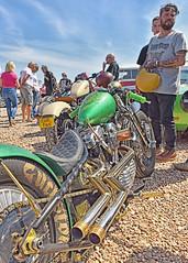 All that Glitters... (Harleynik Rides Again.) Tags: gold chopper metalflake moto bike bikers v2 hd harley sportster bobber engine exhaust harleynikridesagain explore inexplore