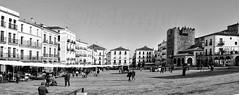 Plazas imponentes (mArregui) Tags: wwwarreguimeluscom nikon marregui plaza plazamayor cceres extremadura espaa blancoynegro blanconegro fotografabn monocromtico
