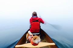 Lost Horizon... (deanspic) Tags: canoe canoeing paddle paddling 100paddles 110100 fog misha motion stlawrenceriver g3x