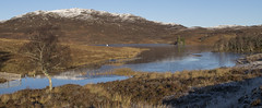 loch tarff (judmac1) Tags: loch snow mountain invernessshire highlands scotland winter moor tree