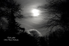 sullen moon bw (Todd Flick) Tags: moon night clouds haunting