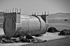 A batea ( mussels farm) floater - Moaa - Galicia (xosediego) Tags: batea mussel moaa floater mexillon galicia travel pesca acuicultura nikon nikkor d3100 darktable dx ubuntu amateur monochrome bw food