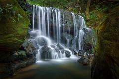 Leura Weeping Rock (affectatio) Tags: waterfall waterfalls falls leura weepingrock bluemountains newsouthwales nsw sony a77mk2 a77ii tokina 1116mm