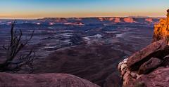 Canyon Sunrise (m e a n d e r i n g s) Tags: canyonlands national park utah canyon sunrise desert greenriver buttes islandinthesky mesa