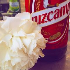 Postureo andaluz (marisalo93) Tags: friends party amigos square rojo fiesta drink sandy cerveza huelva squareformat carnation cruzcampo beber clavel iphoneography instagramapp