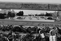 Pont Royal from Solferino Bridge (benito.anon) Tags: bridge blackandwhite bw paris love blancoynegro rio river puente nikon louvre amor bn notredame pont sena solferino pontroyal candados puentereal orsaymuseum museodeorsay lopoldsdarsenghor royalbridge romanticparis parisromantico nikond5200 pasarelalopoldsdarsenghor