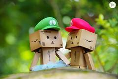 Mario's Family ^^ (Ylang Garden) Tags: amazon mario limit danboard