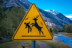 WARNING: Children playing with reindeer.