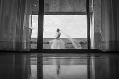 BODA DAYANA MI WEB-12 (amadoclarophoto) Tags: boda playa erick dayana 2014
