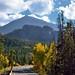 Bear Lake Road (Rocky Mountain National Park)