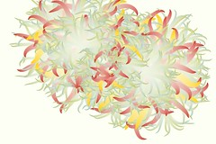 Succulent Graphs 08 (Leonardo Solaas) Tags: abstract drawing computergenerated digitalart graph generative organic actionscript algorithmic particlesystem as3