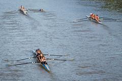 IMG_2959October 04, 2015 (Pittsford Crew) Tags: crew rowing regatta geneseeriver headofthegenesee pittsfordcrew