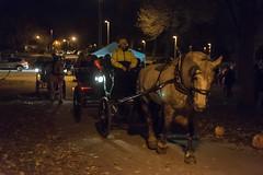HorsePower (jmishefske) Tags: park county horses halloween bay humboldt bash nikon october view neighborhood milwaukee bayview rides hay association 2015 d800e