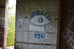 Angel Eyes (Alexandra Keathley) Tags: blue autumn windows urban white building rot eye art fall abandoned broken nature glass face leaves car architecture angel happy graffiti eyes cabin rust heaven industrial factory open outdoor decay parts empty exploring rustic indiana warehouse dirt forgotten smiley revolution warsaw exploration reclaiming