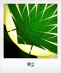 """#DailyPolaroid of 30-9-15 #2 • <a style=""""font-size:0.8em;"""" href=""""http://www.flickr.com/photos/47939785@N05/22556926633/"""" target=""""_blank"""">View on Flickr</a>"""