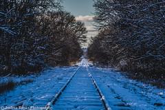 Winter Wonderland Tracks (Joshua Banks Photography) Tags: railroad wisconsin nikon baraboo railroadtracks saukcounty saukcountywi baraboowi d5200 wisconsinrailroads wisconsinrails wisconsinbackroads wisconsinphotographers joshuabanks nikond5200 joshuabanksphotography joshuabanks2015