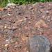 Taconite (Biwabik Iron-Formation, Paleoproterozoic, ~1.878 Ga; Hull-Rust-Mahoning Mine, Hibbing, Minnesota, USA) 5