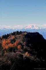 Monte Rosa. (*Valentina.) Tags: november autumn wild snow alps canon landscape novembre natura autumncolors neve monterosa autunno alpi montagna montain paesaggio bosco d550 coloriautunnali