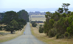 Cycling on French Island (The Pocket Rocket) Tags: cycling australia victoria explore 483 frenchisland westernportbay