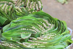 Leaf veins (bluelotus92) Tags: india green leaves leaf market veins karnataka mysore bananaleaves bananaleaf leafveins mysuru devarajursmarket devarajaursmarket