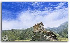 Small hut on top of a mountain in Janjehli valley (FotographyKS!) Tags: hut house abandoned old wooden wood exterior mountain panorama lodge forest peak rock arch aged nobody archeology urban historic building trek trekking architecture roof texture ruin outdoors empty home antique ancient vintage structure bluesky clouds uphill green grass haunted broken meadows rural rustic history landscape janjehli himachalpradesh himalayas india