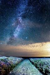 The Milky Way coming over Carding Mill Valley (John Rouse Photography) Tags: star milkyway cardingmillvalley canon canonuk mycanon teamcanon churchstretton starscape stars starrysky sigma shropshire astrophotography astro longexposure longshutter lightroom