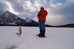 Ice Fishing (Alberta Parks) Tags: fishing icefishing winter cold fun recreation activity parks kananaskis lake fish regulations fishingregulations
