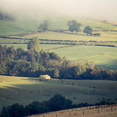 Under the Cloud (ChrisDale) Tags: chrisdale chrismdale cloud dawn fog haze hudswell inversion landscape marske mist morning northyorkshire northyorkshiredales richmond sunrise swaledale trees yorkshiredales richmondshiredistrict england unitedkingdom