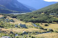 IMG_7261 (lajos.hanyecz) Tags: retezat nationalparks
