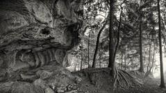 Alien's Roch (jean paul lesage) Tags: meulires vouan viuzensallaz bw monstre monster rocher alpes alps roch vachat