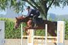IMG_4914 (Bas & Emily) Tags: horse horses horsejumping jump jumping rijden paard paarden springen springwedstrijd sport belleepoque hindernis