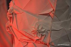 M9244669 (pierino sacchi) Tags: etica moda piazetta sanmarino sfilata sottovento