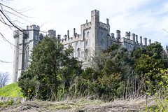 Arundel - Castle View (Le Monde1) Tags: arundel howard dukeofnorfolk lemonde1 nikon d610 town castle cathedral romancatholic market westsussex england county uk southdowns riverarun frenchgothic architect josephaloysiushansom