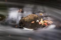 Swirling water (alohadave) Tags: braintree massachusetts monatiquotriver norfolkcounty northamerica overcast pentaxk5 places river sky unitedstates water smcpda60250mmf4edifsdm