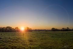 Sun, moon and lens flare. (AnthonyCNeill) Tags: sunrise fields trees sun sky countryside landscape nikon d7000 nature naturaleza lensflare moon newmoon wideangle
