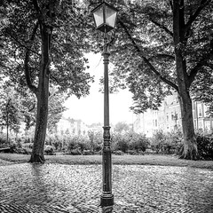 Nothing to illuminate (Wouter de Bruijn) Tags: hasselblad 500cm zeiss distagon 50mm ilford xp2 ilfordxp2 film filmphotography filmisnotdead analogphotography analog mediumformat mediumformatfilm squareformat square 6x6 120 120film blackandwhite blackwhite bw bnw monochrome urban landscape urbanlandscape lamppost lightpost lantern light city park outdoor trees contrast