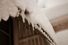 Winterized (karmakerosene) Tags: snow winter snowwy snowstorm blizzard snowing snowfall icicles icicle ice roof minnesota snowflakes nature weather nikond7000 nikon d7000 35mm bokeh